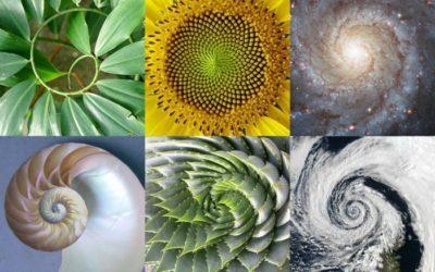 Spirales Ascendantes ou descendantes