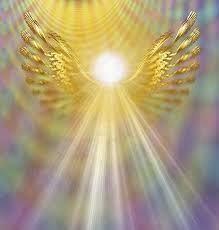 Atelier Découverte : Je suis un Ange !